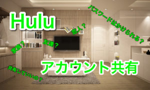 Huluを共有したい方必見!家族・友達・恋人と動画を楽しもう!プロフィールごとにパスワードもつけられる!